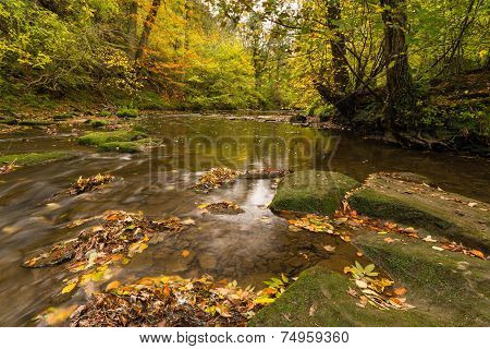River Blyth In Autumn