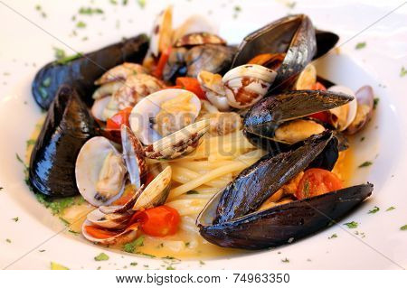 Seashells Meal