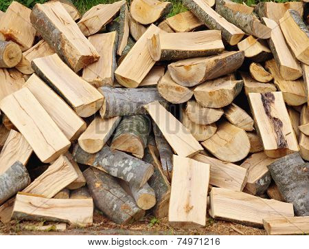 Firewood,  Scattered Pile Of Beech