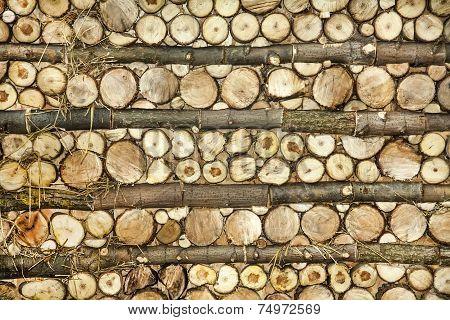 Natural Wood Log Background