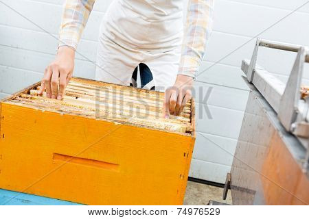 Midsection of female beekeeper arranging honeycomb frames in crate at factory
