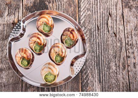 bourgogne snail, french gastronomy