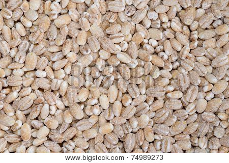 Food Background Of Beige Grain Barley