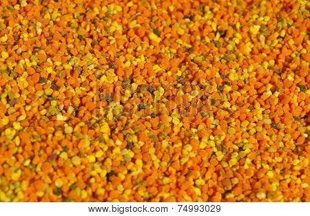 Fresh Bee Pollen