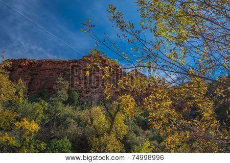 The Enchanting and Beautiful Sedona Arizona