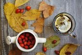 foto of wild-brier  - Vintage Autumn border with dogrose berries and fallen leaves on old wooden table - JPG