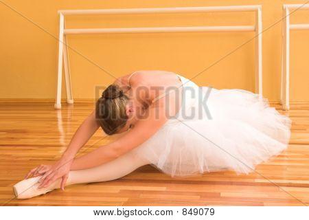 Ballerina #22