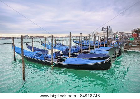Gondolas With View Of Santa Maria Della Salute