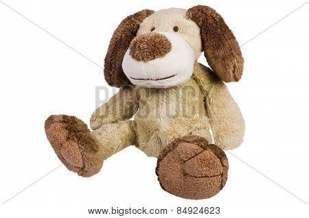 Close-up of a stuffed dog toy
