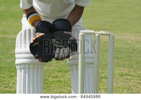 Wicket keeper standing behind stumps