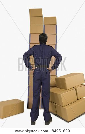 Rear view of a store in charge looking at cardboard boxes