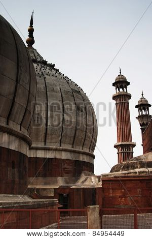 Domes of a mosque, Jama Masjid, Delhi, India