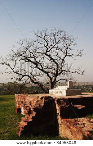Ruins of a grave, Fatehpur Sikri, Agra, Uttar Pradesh, India