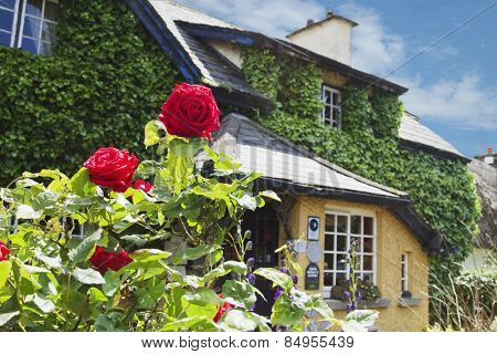 Low angle view of a cafe, Adare, County Limerick, Republic of Ireland