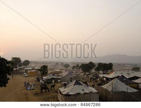 Tents for temporary shelter at Pushkar Camel Fair, Pushkar, Ajmer, Rajasthan, India