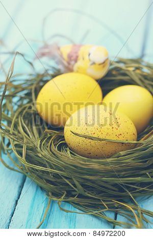 Eggs With A Bird, Tinted