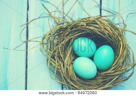 Turquoise Eggs, Tinted