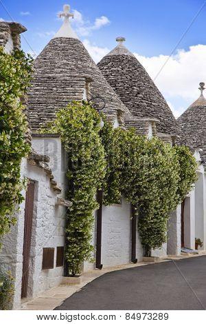 Trulli houses in a town, Alberobello, Bari, Puglia, Italy