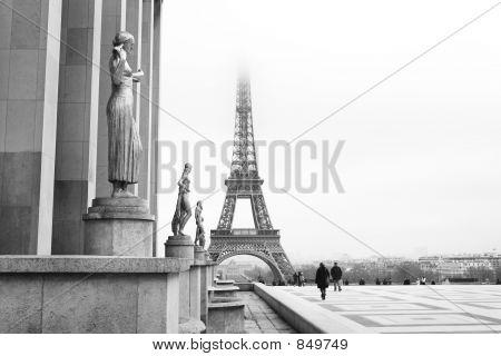 Paris #65
