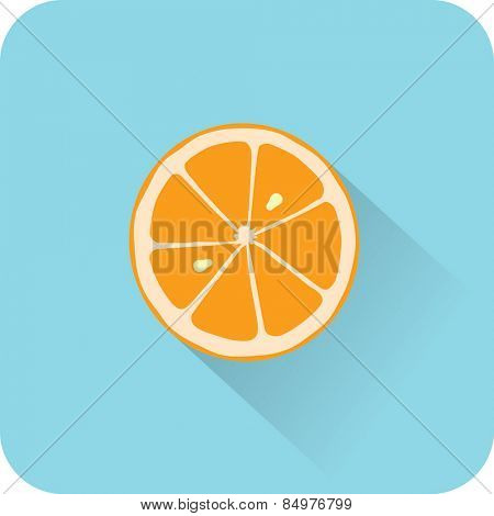 Orange icon. Flat design style modern vector illustration