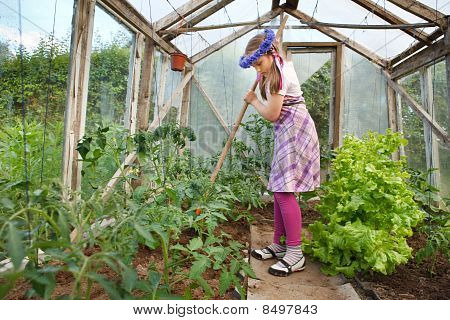 Little Girl Gardening In Greenhouse