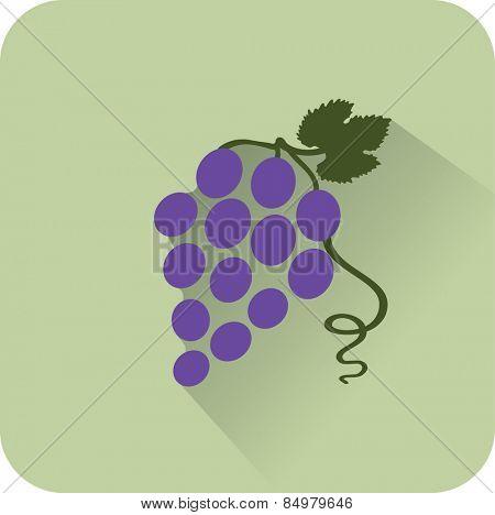 Vine icon. Flat design style modern vector illustration