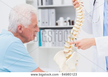 Cropped image of female doctor explaining anatomical spine to senior man in clinic