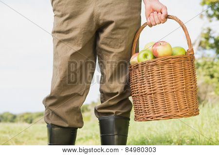 Farmer holding basket of apples on a sunny day