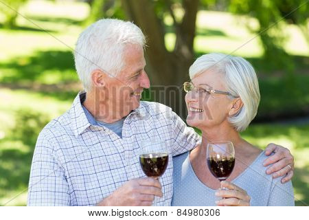 Happy senior couple drinking at the park on a sunny day