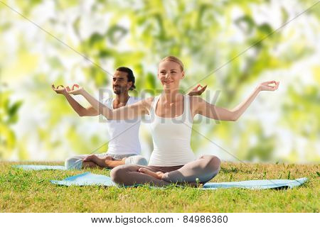 sport, fitness, yoga and people concept - smiling couple meditating and sitting on mats over green tree leaves background