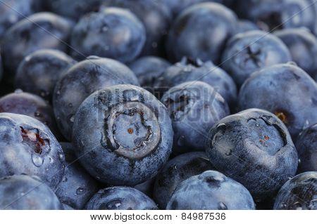 fresh washed wet blueberries
