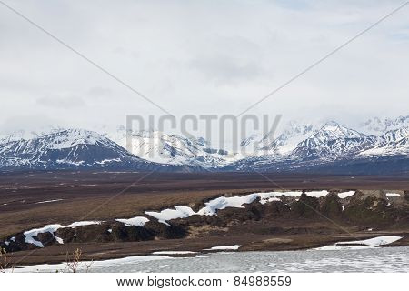 Alaska's Fields and Mountains