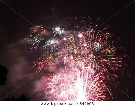 Fireworks Artistry 3
