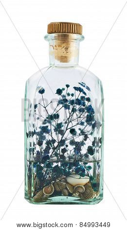 Glass bottle full of herbs