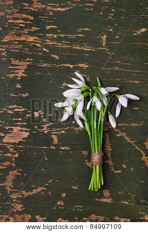 Snowdrop Flowers Bouquet On Green Wooden Rustic Background