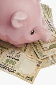 foto of indian currency  - Piggy bank on Indian currency notes - JPG