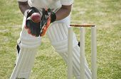 picture of cricket  - Cricket wicketkeeper catching a ball behind stumps - JPG