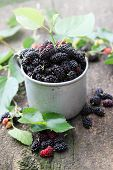 stock photo of mulberry  - fresh mulberries in an old metal mug - JPG