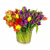 picture of vase flowers  - Flower bouquet from colorful tulips in glass vase isolated on white background - JPG