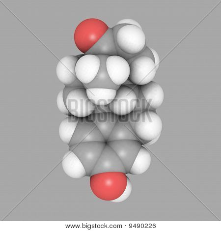 Estrutura Molecular do estrogênio