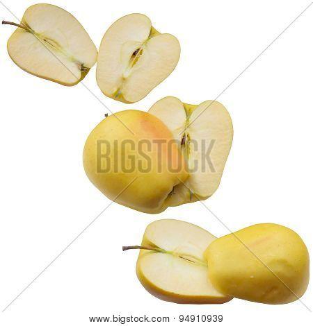 Autumn Apples.