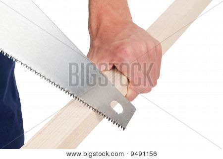 Sawing Wood