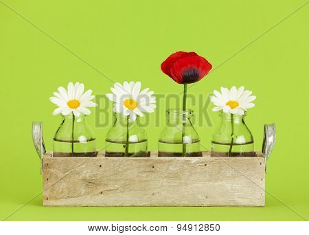 Wooden tray with small bottles containing three marguerite daisy and one red poppy flowers, green background
