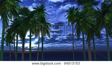 3D palm tree landscape against night sky