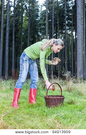 mushroom picking woman