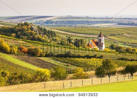 church of Falkenstein with autumnal vineyards, Lower Austria, Austria