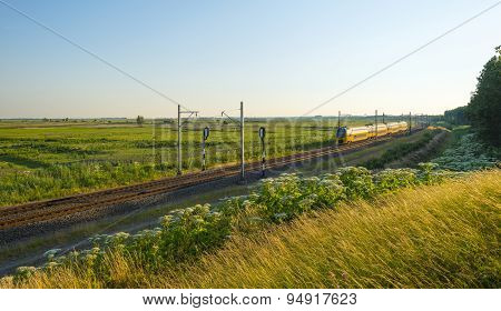 Electric train driving through nature in summer