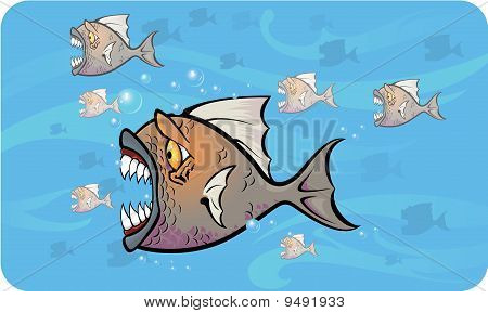 Piranhas attack