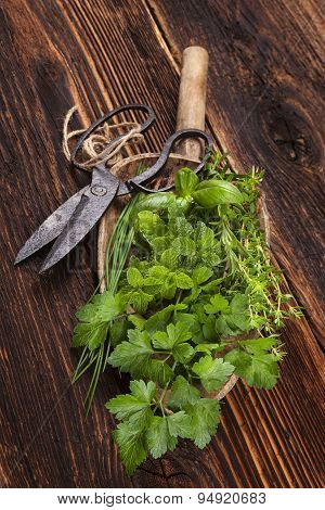 Various Aromatic Culinary Herbs, Rustic Style.