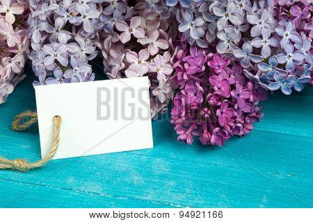 Postcard with splendid lilac flowers